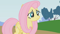 Fluttershy being ignored S01E07.png