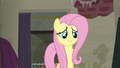 "Fluttershy enters with ""interesting news"" S6E9.png"