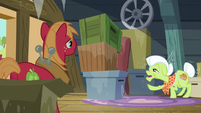 Granny Smith -maybe it's in that one on the bottom- S5E17