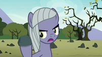 Limestone Pie -you see Mudbriar as a rock- S8E3