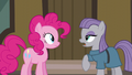 """Maud Pie """"it's an expression of love"""" S6E3.png"""
