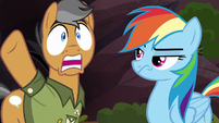 "Quibble ""what are these ponies thinking?!"" S6E13"
