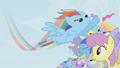 Rainbow Dash's Fantastic Filly Flash S1E03.png