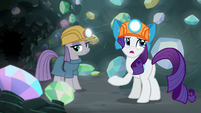 "Rarity ""I'm desperate to find one"" S7E4"