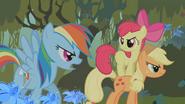 S01E09 Rainbow odgraża się Zecorze