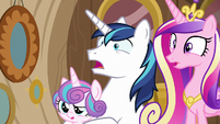 Shining Armor and Cadance in complete shock S7E22