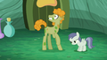 Stallion scared S5E26.png