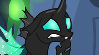 Thorax looking even more worried S6E26