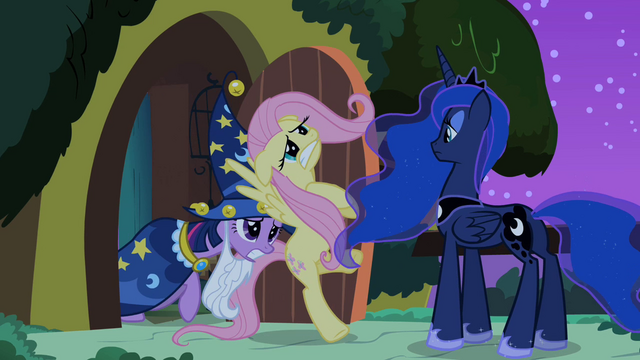 Файл:Twilight pushes Fluttershy towards Princess Luna S2E04.png