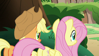 AJ and Fluttershy observing the Kirin S8E23