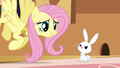 Angel shows his disapproval at Fluttershy S3E10.png
