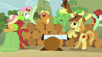 Apple family together during Raise This Barn S3E8