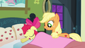 Applejack covering Apple Bloom with a blanket S3E08.png