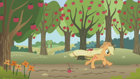 Applejack hears a stampede S1E04