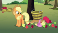 Applejack notices Apple Bloom on the ground S7E9.png