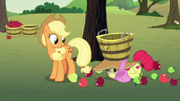 Applejack notices Apple Bloom on the ground S7E9