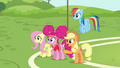 Applejack presenting the training course S6E18.png