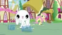 Bunny Fluttershy looks at empty potion bottles S9E18