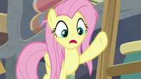 "Fluttershy ""that extract is in short supply!"" S9E18"
