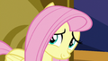 Fluttershy looking at Twilight Sparkle S7E14.png