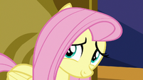 Fluttershy looking at Twilight Sparkle S7E14