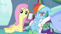 Fluttershy sitting next to Rainbow Dash S5E5.png