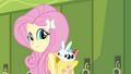 Fluttershy with animal friends EG.png