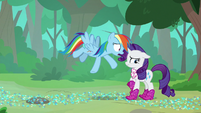"Rainbow ""giving me all that grief"" S8E17"