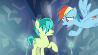 Rainbow -you don't care about anypony- S8E22