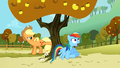 Rainbow Dash gasping S1E13.png