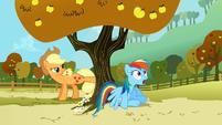 Rainbow Dash gasping S1E13