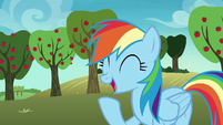 Rainbow Dash having a laugh S8E5