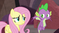 Spike loses hope; Fluttershy feels sorry for him S9E9