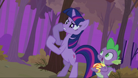 Twilight fist S2E21