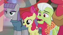Apple Bloom in wide-eyed wonder S5E20