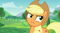 Applejack --do you see somethin' wrong-- S5E24