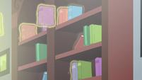 Books put into bookshelves S5E26
