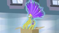 Costume headdress floating S4E19