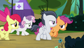 Cutie Mark Crusaders catch up with Rumble S7E21.png