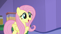"Fluttershy ""I'm sure Shining Armor will love it"" S5E19"