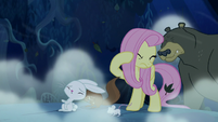 Fluttershy and animals swept by the wind S6E15