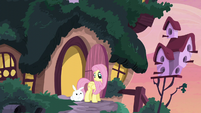 Fluttershy looking at Angel S5E3
