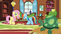 Fluttershy sees Tank yawning S5E5