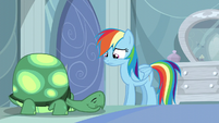 Rainbow Dash contemplating S05E05