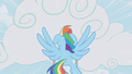 Rainbow Dash flying through the clouds S1E06.png