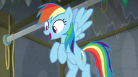 Rainbow Dash getting excited S8E7