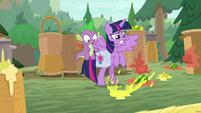 Twilight avoiding splattering fruit S9E5