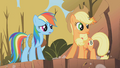Applejack and Rainbow Dash2 S01E13.png