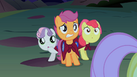 CMC afraid of cockatrice S01E17