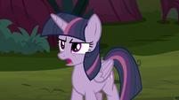 Fake Twilight Sparkle suggests splitting up S8E13